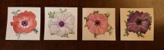 Four Anemones