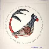 Tonala Parrot Oscar